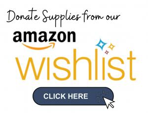 Amazon Wishlist Link 2021