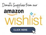 Amazon-Wishlist-Link-2021